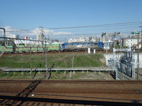 DSC01575.jpg