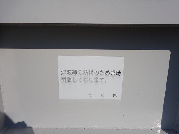 DSC02481.jpg
